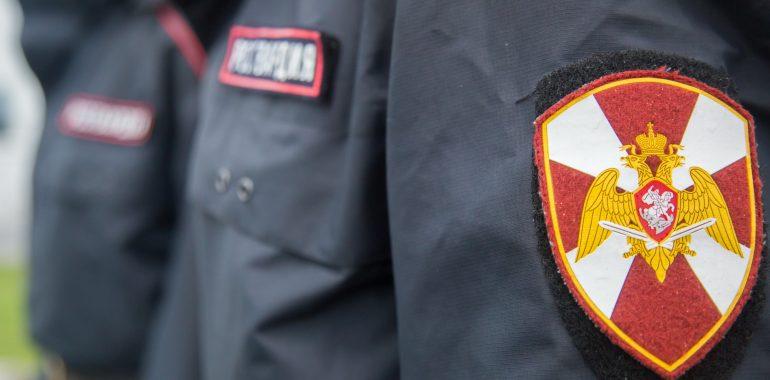Госдума расширила права Росгвардии в части проверки ЧОПов